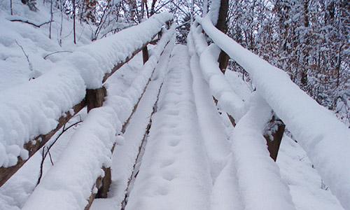 200209 NPaktiv Reiss zuschnitt1 ABGESAGT   Naturpark aktiv   Im Wandel der Jahreszeiten   Winter