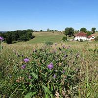 Naturpark aktiv - Wo war nochmal der Haselhof?