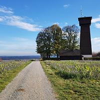 Naturpark aktiv - Juxkopf - Hüttlenwaldschlucht – Silberstollen