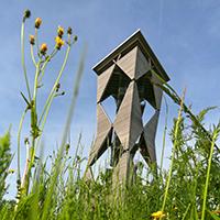 Naturpark aktiv - Mit dem E – Bike von Turm zu Turm