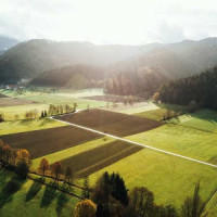"""Fünf weitere """"Bio-Musterregionen Baden- Württemberg"""" ausgewählt"""