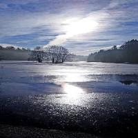 Eisige Schönheit am Ebnisee