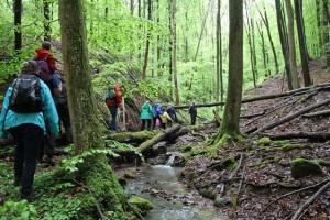 Wanderung mit Naturparkführer Peter Elsäßer