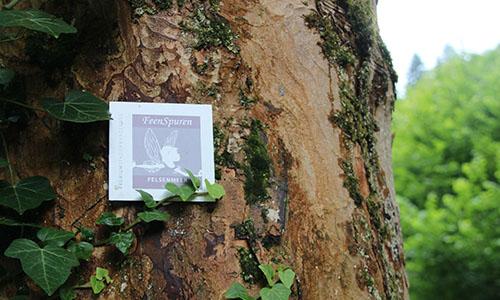"""2019 07 16 Zwischenwegweiser  Premiumwanderweg Felsenmeer Feenspuren Foto Stadt Murrhardt """"Feenspuren"""" werden im Schwäbischen Wald ausgeschildert"""