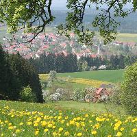 Im Naturpark - der Ausblick auf Kirchenkirnberg!