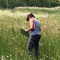 Wildblumenwiesen des Projekts Blühende Naturparke immer artenreicher