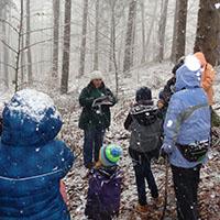 Naturpark aktiv 2021 - Tiere im Winterwald