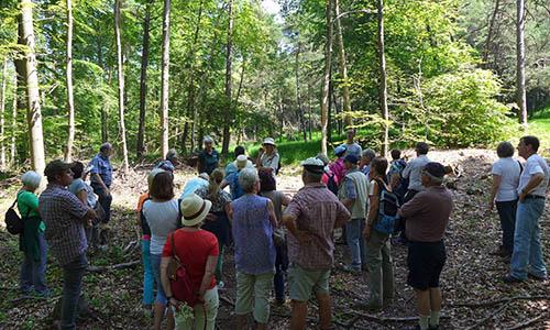 B OrchideenStrassenrand Blick zurück nach vorn: Unsere NaturparkführerInnen berichten