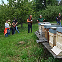 Bienentour 03 Blick zurück nach vorn: Unsere NaturparkführerInnen berichten