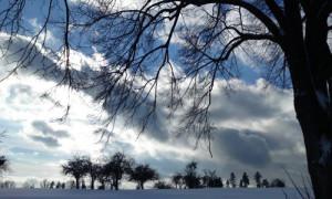 Winter im Naturpark Schwäbisch-Fränkischer Wald