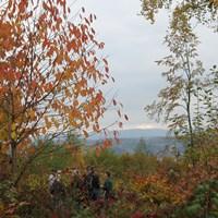Im märchenhaften Herbstwald mit Naturparkführerin Helene Angstenberger