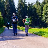 WaldMeisterWanderMarathon am 20. Tag des Schwäbischen Waldes