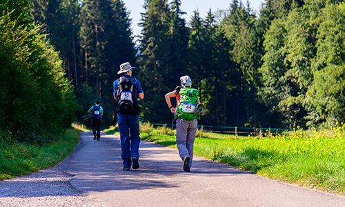 K H Rueckert Wandermarathon1 WaldMeisterWanderMarathon am 20. Tag des Schwäbischen Waldes