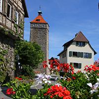 Lachnersturm mit Blumen