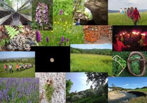 Naturparkführer Mai Wanderungen