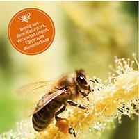 Wir schwärmen für Bienen, schwärmen Sie mit!