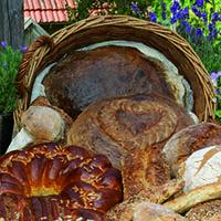 Naturparkmarkt in Waldenburg – Treffpunkt der regionalen Vielfalt