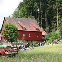 Am deutschen Mühlentag geben Mühlen Einblick in ihr historisches Innenleben