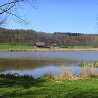Neumühlsee Die Kommunen im Naturpark: Stadt Waldenburg