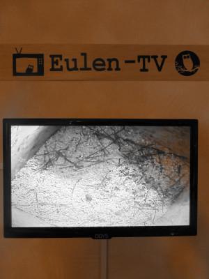 P1000951 300x400 Neuen Attraktion im Naturparkzentrum: das Eulen TV