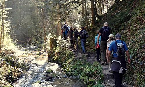 P4090053A 002 Naturpark…bewegt! 25 km bergauf – bergab im Welzheimer Wald
