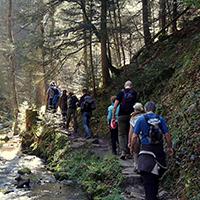 25 km bergauf – bergab im Welzheimer Wald mit den WaldMeistern