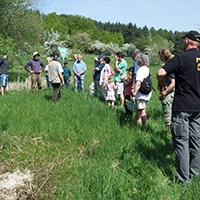 Naturschutzrundgang um Berglen-Hößlinswart