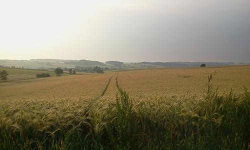 SHA Hohenlohe Wolpertshausen Banzhaf 30.06.12 Hätten Sie´s gewusst?