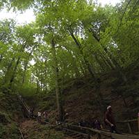 66 Stufen der Himmelsleiter ging es in die steile Klinge hinab