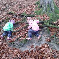 Die Wurzel-Wackler - eine Waldspielgruppe für Kinder von 1,5 bis 3 Jahren
