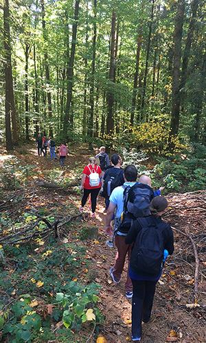 abenteuerreich Erlebnistouren Baumtour 2 Blick zurück nach vorn: unsere Naturparkführer/ innen berichten