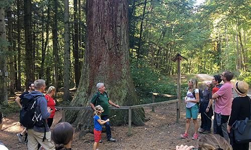 abenteuerreich Erlebnistouren Baumtour 3 Blick zurück nach vorn: unsere Naturparkführer/ innen berichten