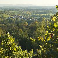 Naturpark-Gemeinde Aspach