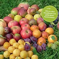 Broschüre zum Jahr der Sortenvielfalt
