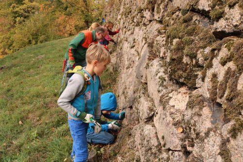 2018 10 23 Herzenssache Natur Bühlertal 04 Artikelbild Herzenssache Natur   erfolgreiche Landschaftspflege