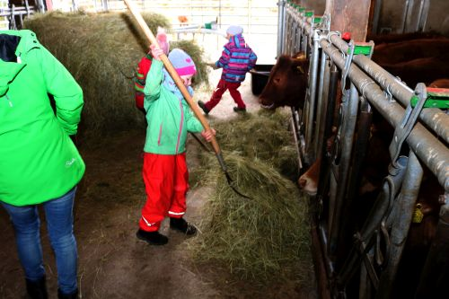 2019 04 04 Auftakt Muh die Kuh 3 Auftakt Projekt Muh, die Kuh: Frühstück für die Kühe