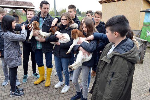 2019 04 08 Kooperatonsvereinbarung Naturpark Schule Realschule Gaggenau 2 Erste Realschule wird Naturpark Schule