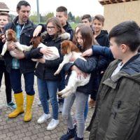 2019_04_08_Kooperatonsvereinbarung Naturpark-Schule Realschule Gaggenau_2_Beitragsbild