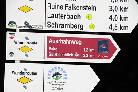 Auerhahnweg 02 Der Auerhahnweg in Tennenbronn