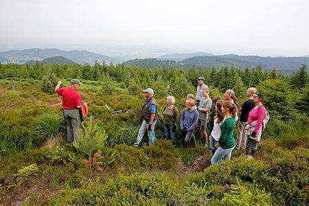 Baden Baden Freiwillige für Herzenssache Natur gesucht