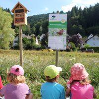 Blühender Naturpark01 Beitragsbild