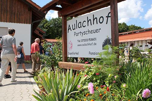 Brunch023 Rund 4.000 Gäste beim Brunch auf dem Bauernhof