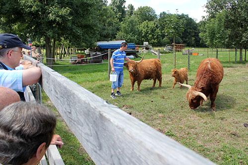 Brunch08 Rund 4.000 Gäste beim Brunch auf dem Bauernhof