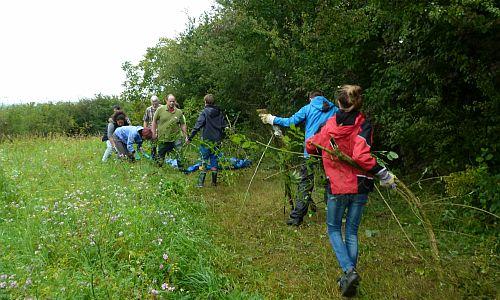 Herzenssache Ettenheim 500 Freiwillige Helfer für Herzenssache Natur gesucht