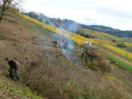 Ohlsbach1 Freiwilliges Engagement ist wieder gefragt