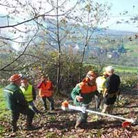 Ortenauer-Landschaftspflegetag_3_Beitragsbild