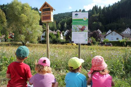 Projekte02 Blumenwiesenpatenschaft als Weihnachtsgeschenk