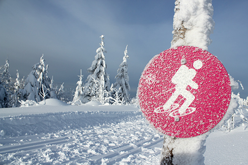 Schneeschuh Geführte Schneeschuhtour auf dem Hochkopf