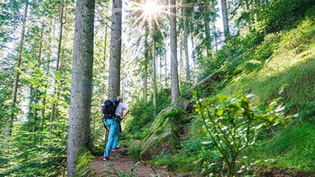 Trekking032 Die Trekking Saison beginnt