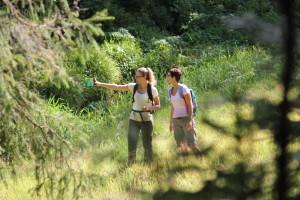 Trekking_Schwarzwald14